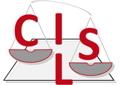 "<a href=""https://www.cils.org/""> Center for International Legal Studies.  </a>"